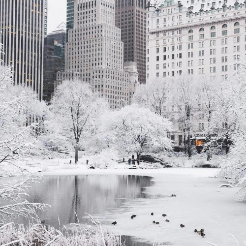 Christmas in New York City – its a Magical Place